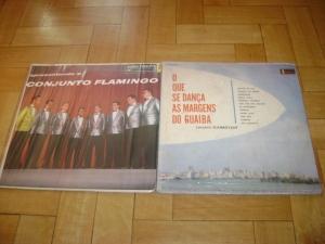 Blog de bandasdorockgauchoforever :bandas do rock gaúcho forever, Lps Conjunto Flamingo / Flamboyant